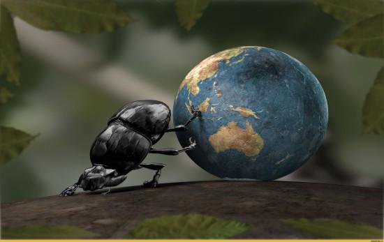 art-жук-скарабей-земля-песочница-143825[1]